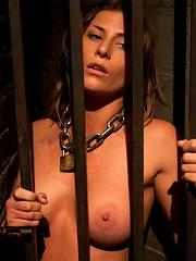 Lesbian Slave Training Ariel XFeatured Trainer-Aiden Starr